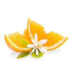 Natural Orange Blossom Fragrance Oil