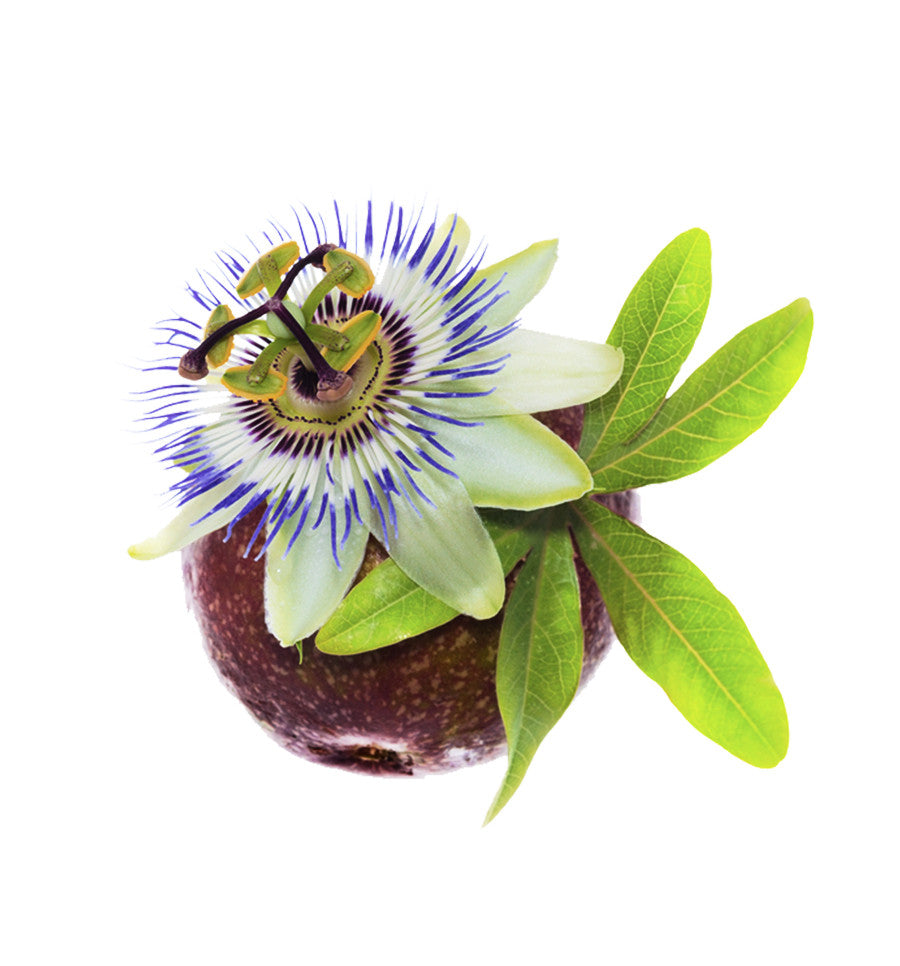 Passionflower Natural Fragrance Oil - New Zealand Candle Supplies