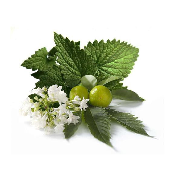 Patchouli Essential Oil - New Zealand Candle Supplies