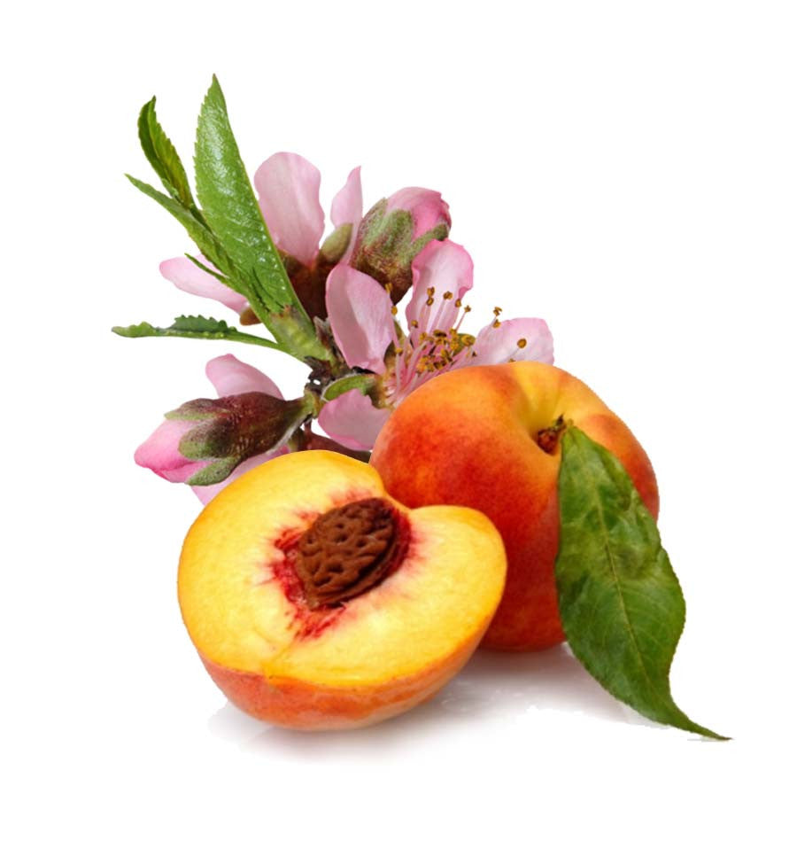 Peach Blossom Natural Fragrance Oil - New Zealand Candle Supplies