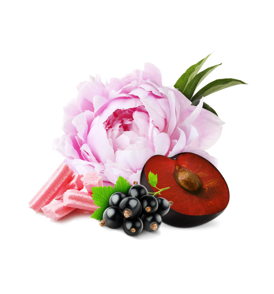 Peonies & Black Plum Fragrance Oil