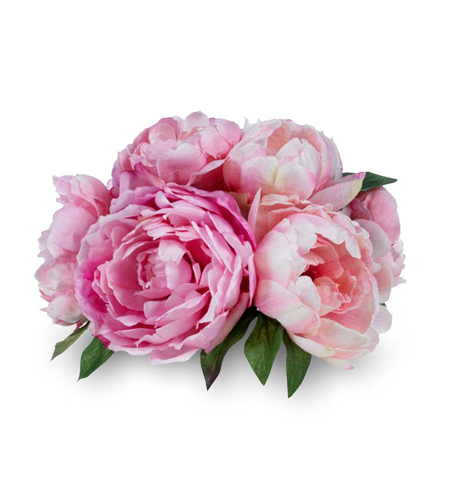 Pink Peony Natural Fragrance Oil - New Zealand Candle Supplies