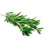 Rosemary Essential Oil - New Zealand Candle Supplies