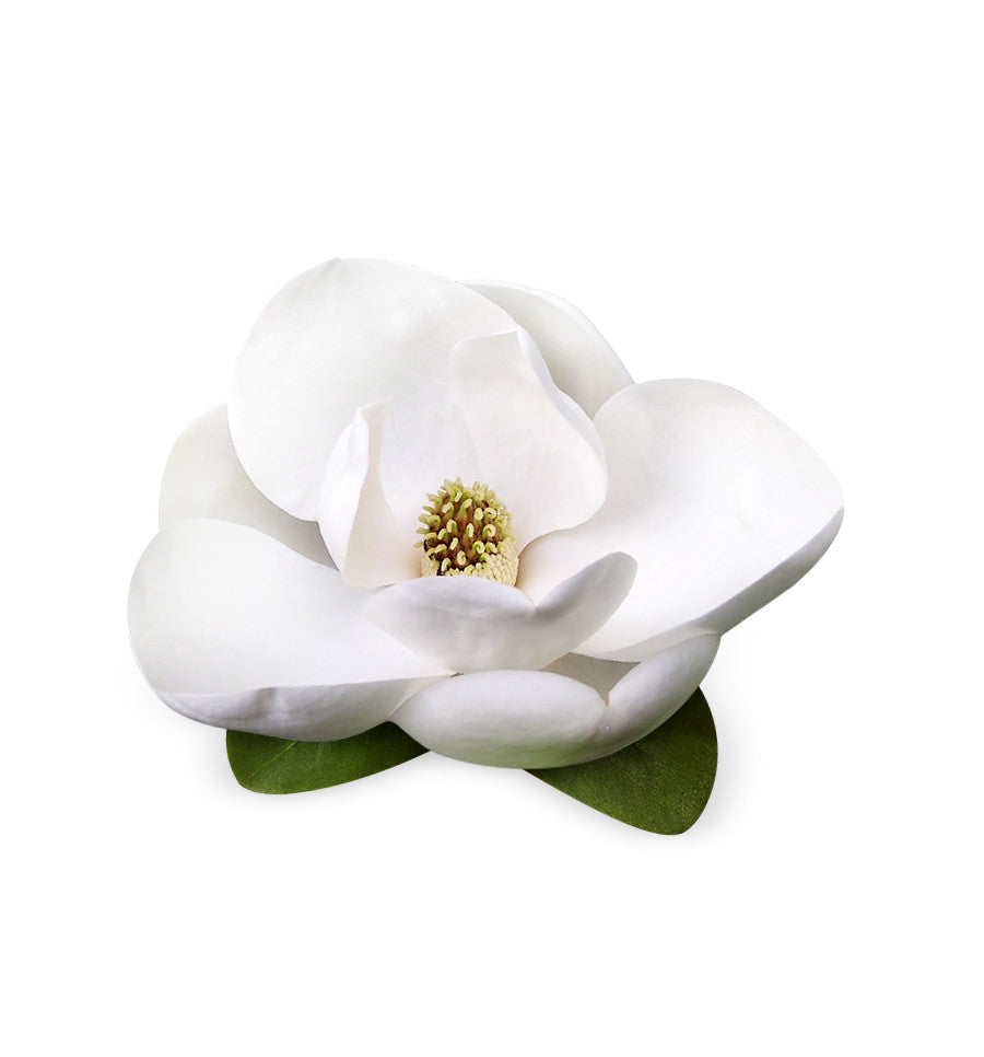 White Magnolia Fragrance Oil Make Soy Wax Candles Shop Now New