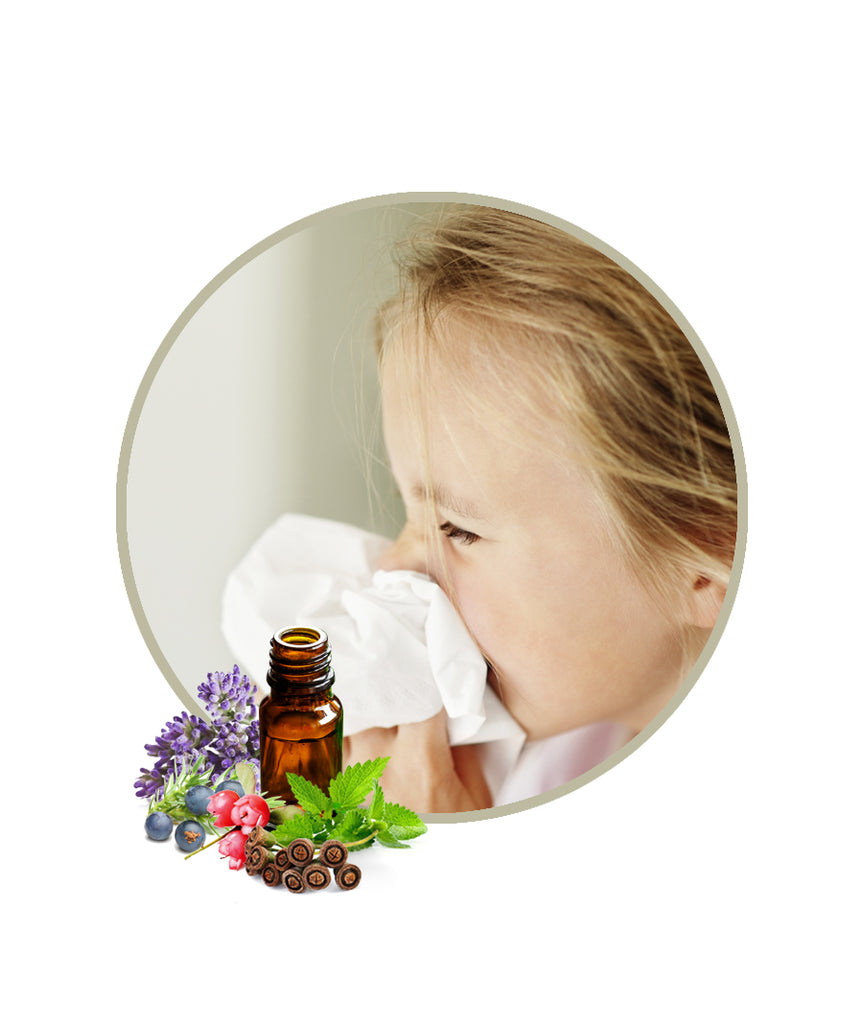 Sinus Relief Essential Oil Blend