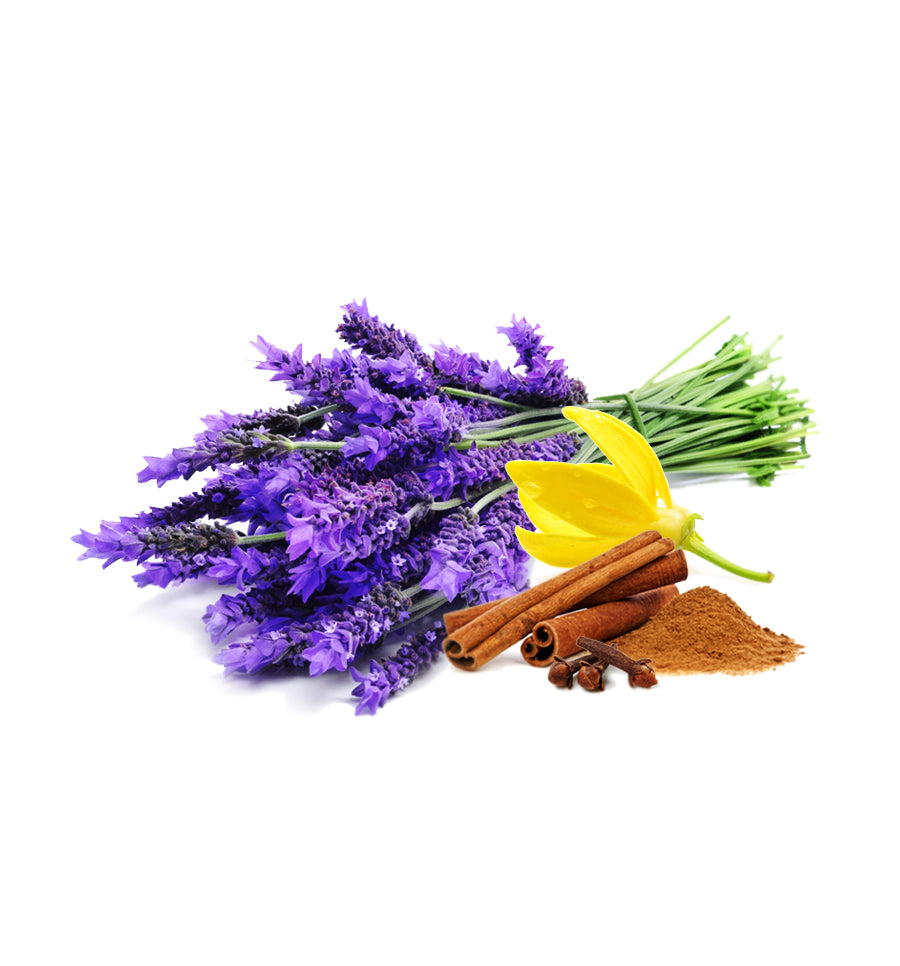 Smoked Lavender Fragrance Oil