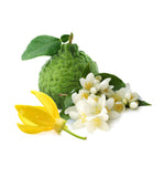 Turn Up The Heat Fragrance Oil (Jasmine, Bergamot & Ylang-Ylang)