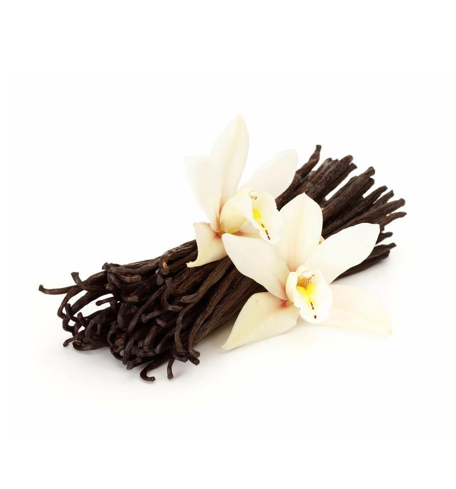 1. Vanilla Fragrance Oil Collection 6 x 100mls for $54.75