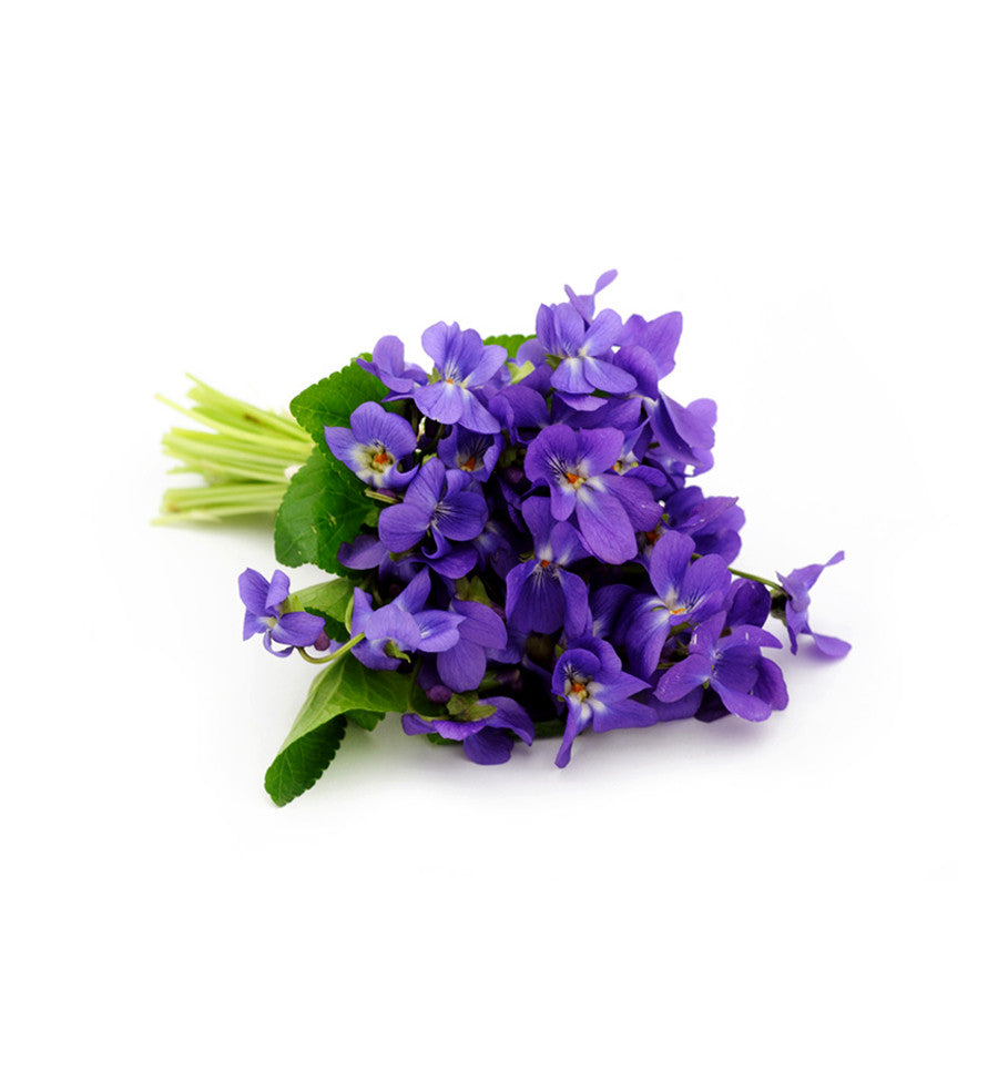 Violet Natural Fragrance Oil - New Zealand Candle Supplies