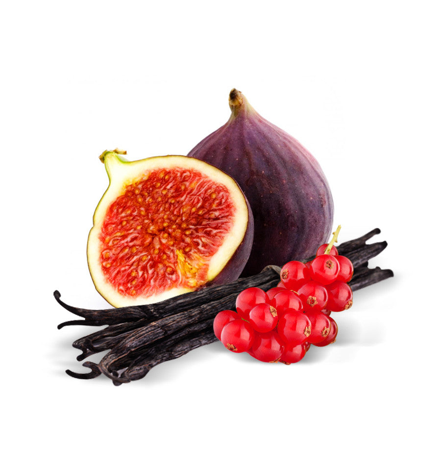 Wild Fig & Cassis Fragrance Oil