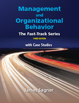 Fast Track Management and Organizational Behavior 3rd Edition, by James Sagner