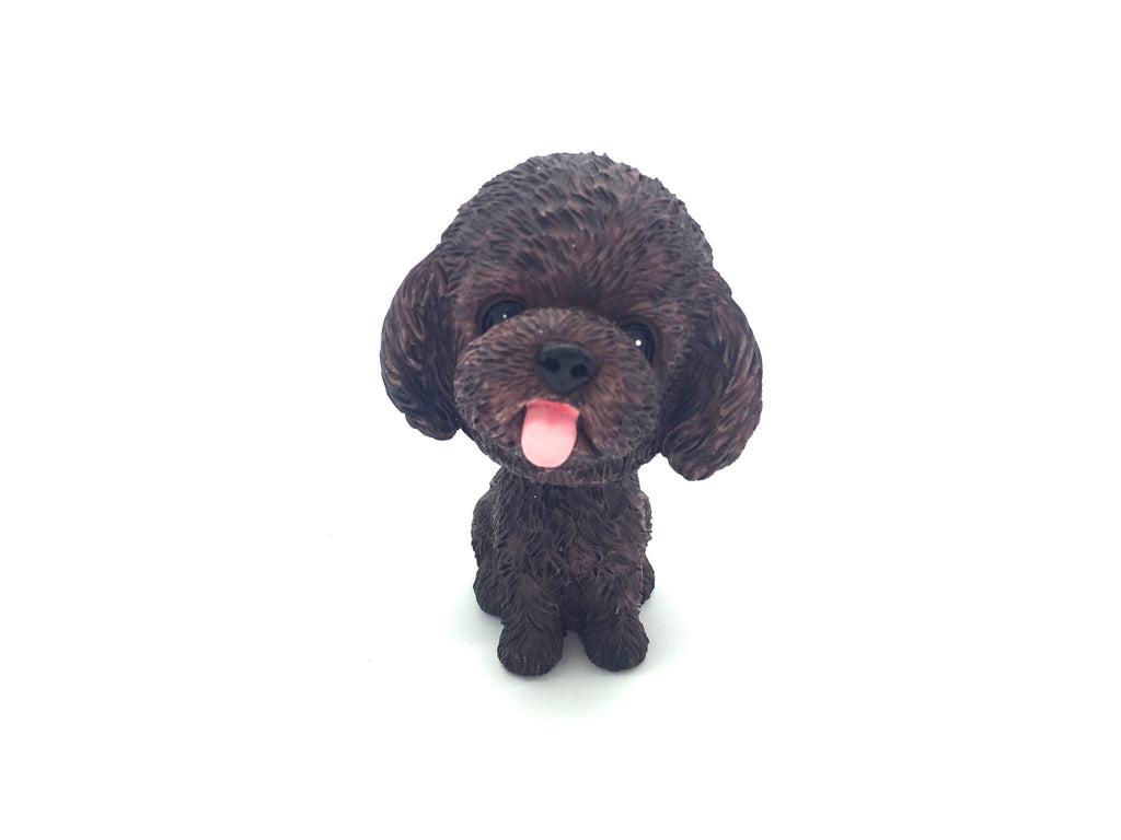 Poodle - Chew Time - 7