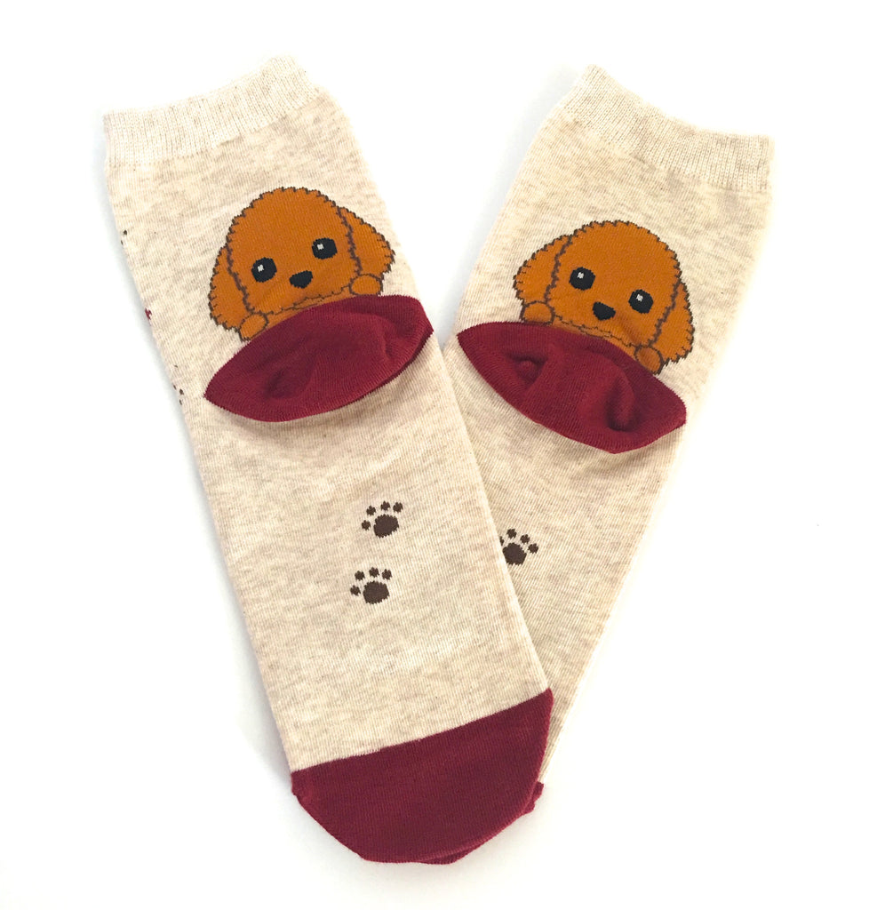 Poodle Socks - Chew Time - 2