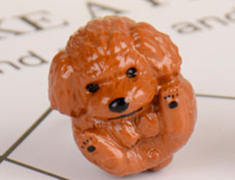Toy Poodle Ring