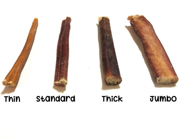 15 cm Bully Stick (Thick, Odour-free) - Chew Time - 1