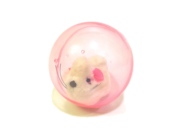 Hamster Ball - Chew Time