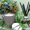 Scented Candle - Off the beaten track | Gaya Alegria