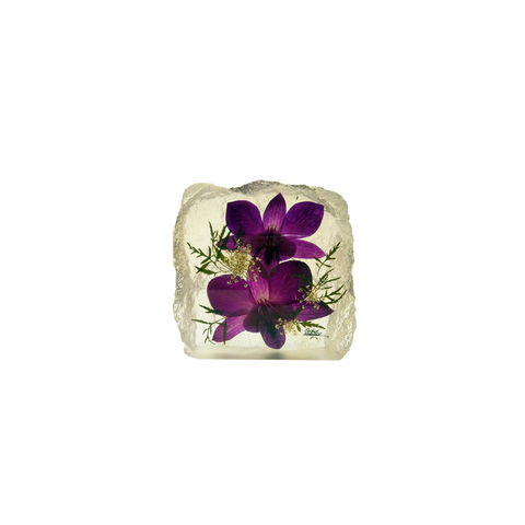 Preserved Dendrobium Orchid Paperweight - DC183