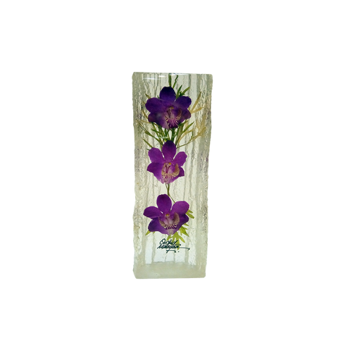 Preserved Dendrobium Orchid Paperweight - DC208