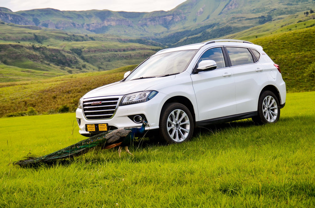Haval at the 2019 Wesbank Festival of Motoring