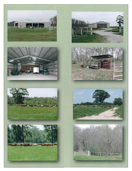 Listing #DD1422 - Premium Cattle Ranch