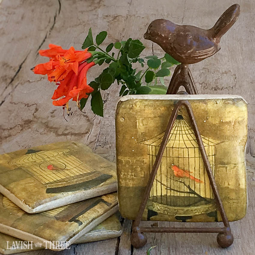 Bird lover vintage cage coaster set Lavish three 3