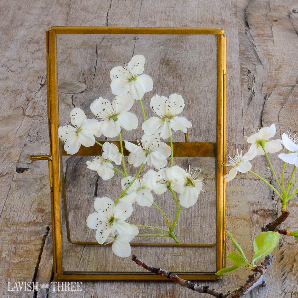 Heirloom brass and glass hinged vintage style standing floating frame 4x6