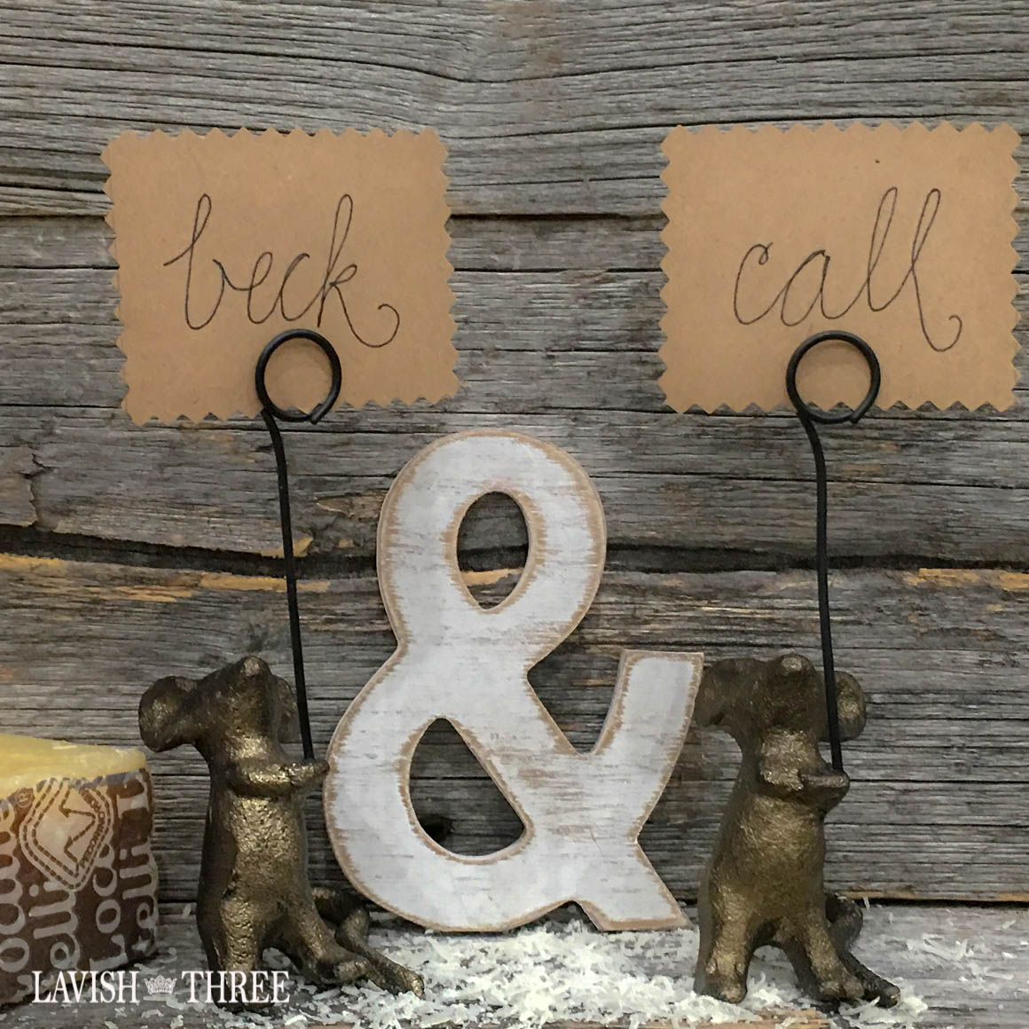 What's nice about MICE? card holder displays ~ set of 2