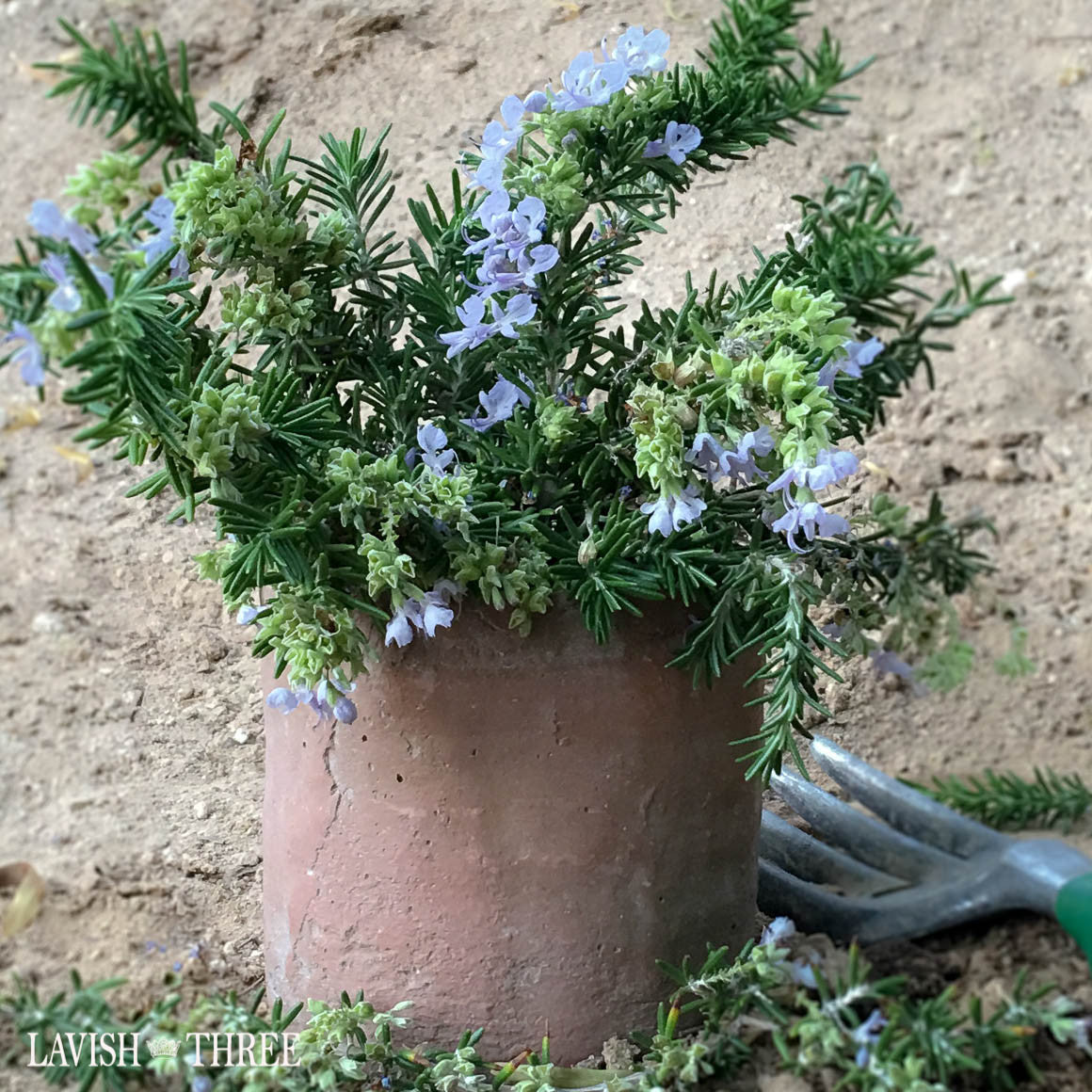 Garden cement Flower herb pot planter Lavish Three