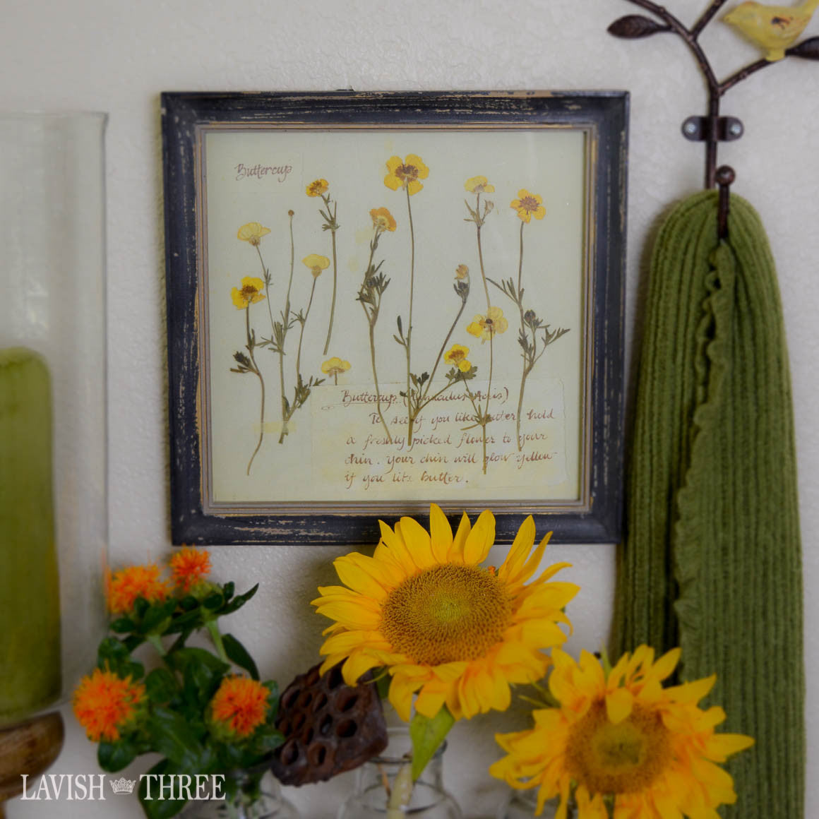 Sunny buttercup floral botanical vintage print in cottage chic frame wall art decor