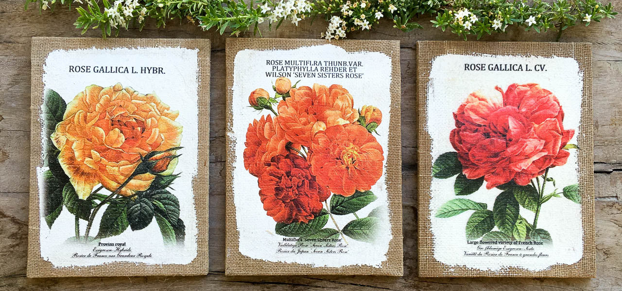 Painted rose on burlap canvas wall art decor set of 3