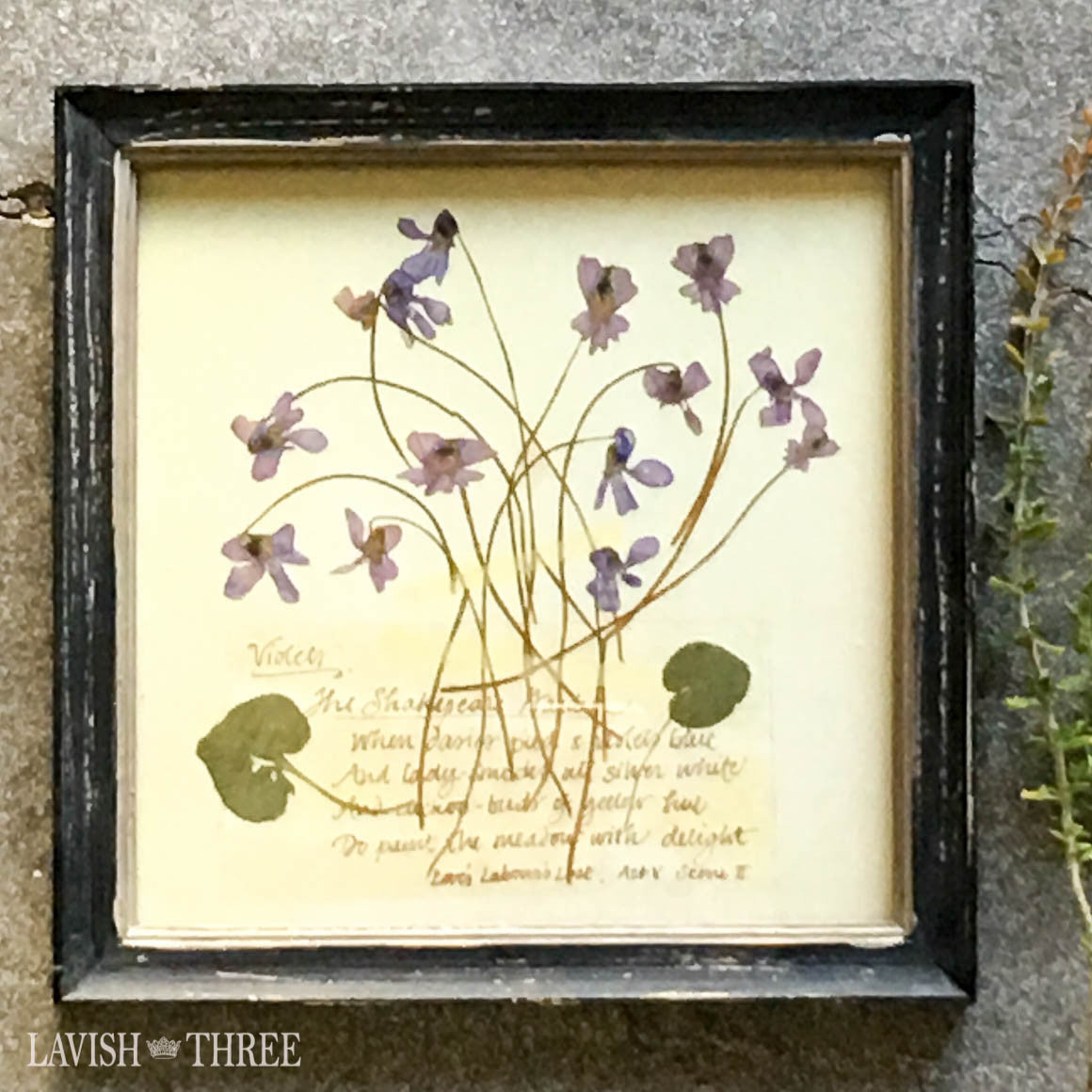 Violet framed vintage botanical floral print wall art decor