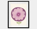 Purple Flower Framed Art by Neesha Hudson - Large / Black