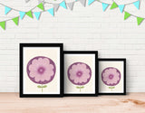 Purple Flower Framed Art by Neesha Hudson - Lifestyle