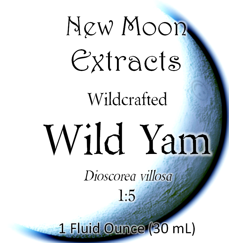 Wild Yam Tincture (Wildcrafted)