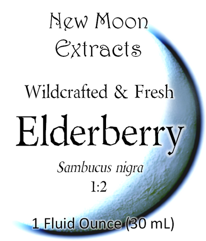 Elderberry Tincture (Wildcrafted, Fresh)