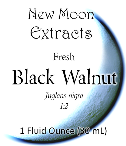 Black Walnut Tincture (Fresh)