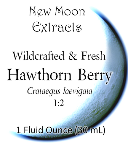 Hawthorn Berry Tincture (Wildcrafted, Fresh)