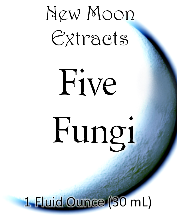 Five Fungi Tincture Blend (Wildcrafted, Organic)