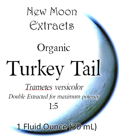 Turkey Tail Tincture (Organic)