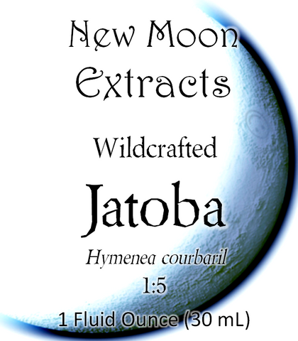 Jatoba Tincture (Wildcrafted)