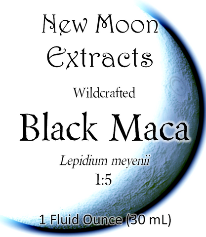 Black Maca Tincture (Wildcrafted)
