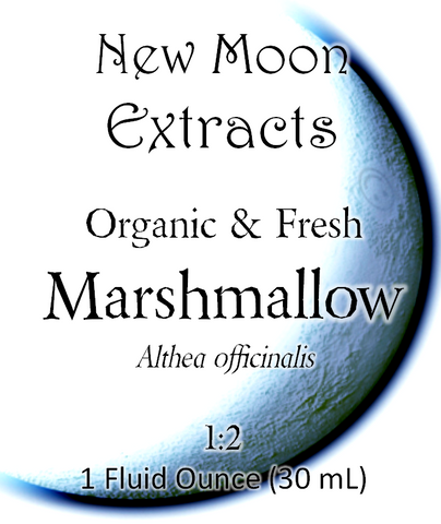 Marshmallow Tincture (Organic, Fresh)