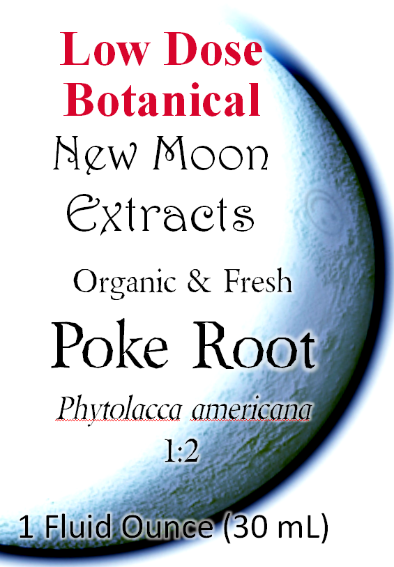 Poke Root Tincture (Organic, Fresh)