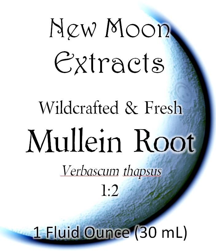 Mullein Root Tincture (Wildcrafted, Fresh)