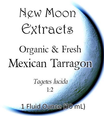 Mexican Tarragon Tincture (Organic, Fresh)