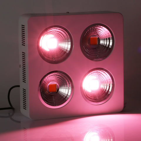 Full Spectrum 800W COB LED Grow Light for Hydroponic and Medical plant use