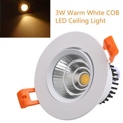 Ceiling Dimmable LED Down Light - Online Lighting - 1