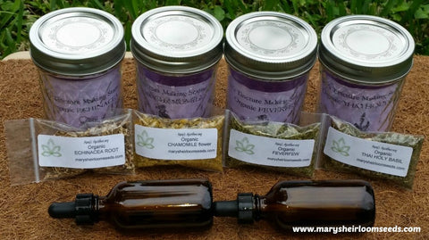 Herbal Remedy Starter Kit-4