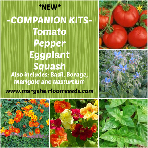 Companion Planting Combo Pack